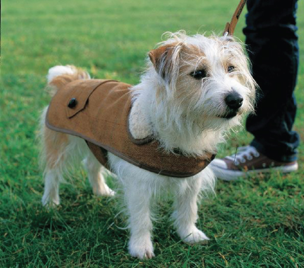Makezine Dog Coat