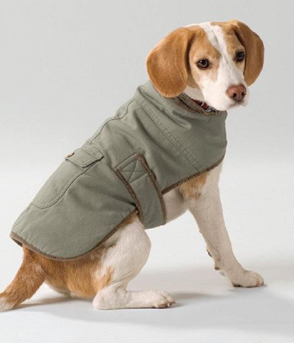 LL Bean Dog Coat