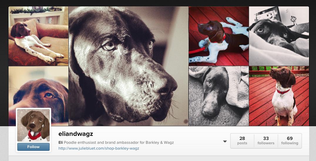Eli and Wagz Instagram
