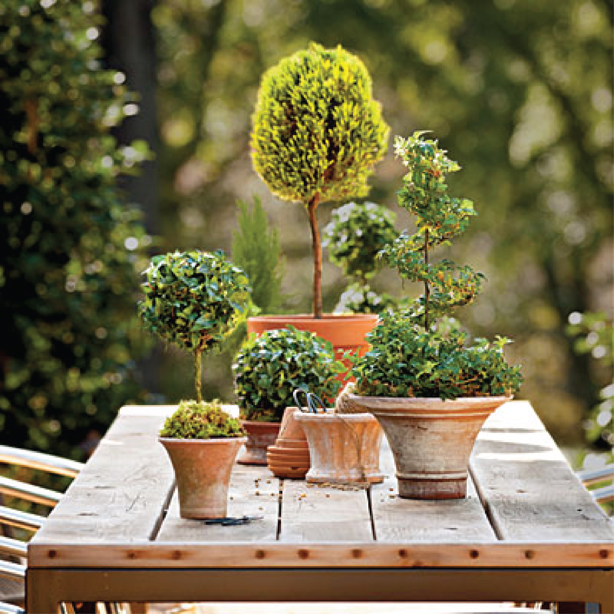 From Southern Living