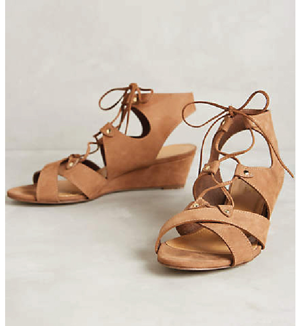 Gladiator Wedges from Anthropology