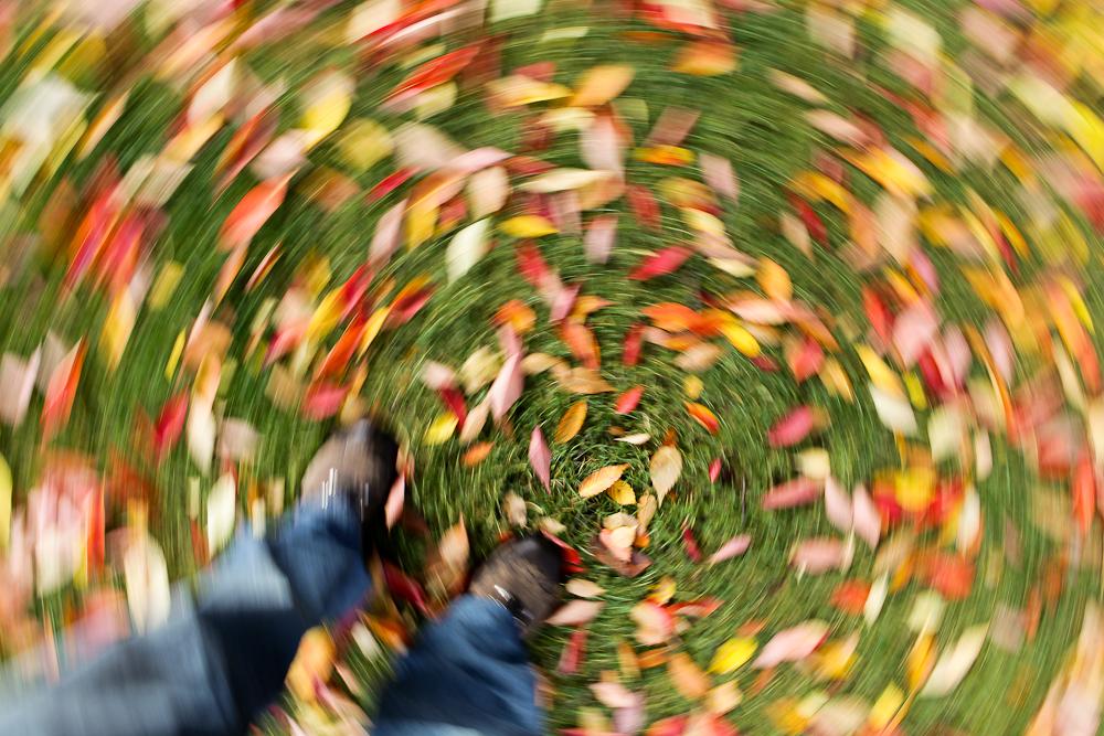 fall-30.jpg
