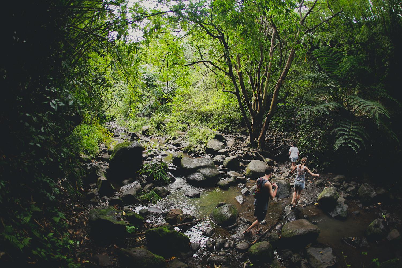 hawaii2013-41.jpg