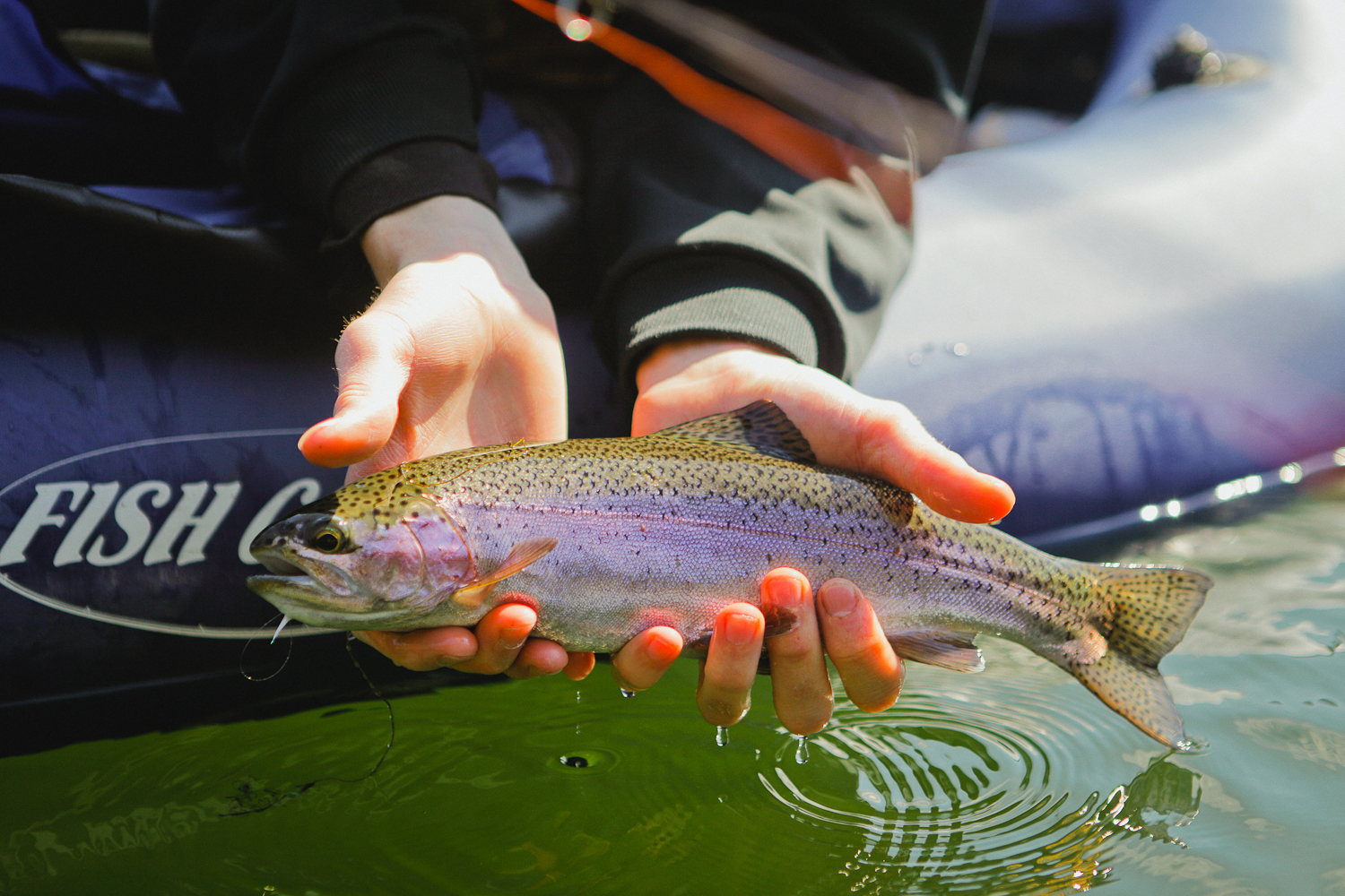flyfishing-6.jpg