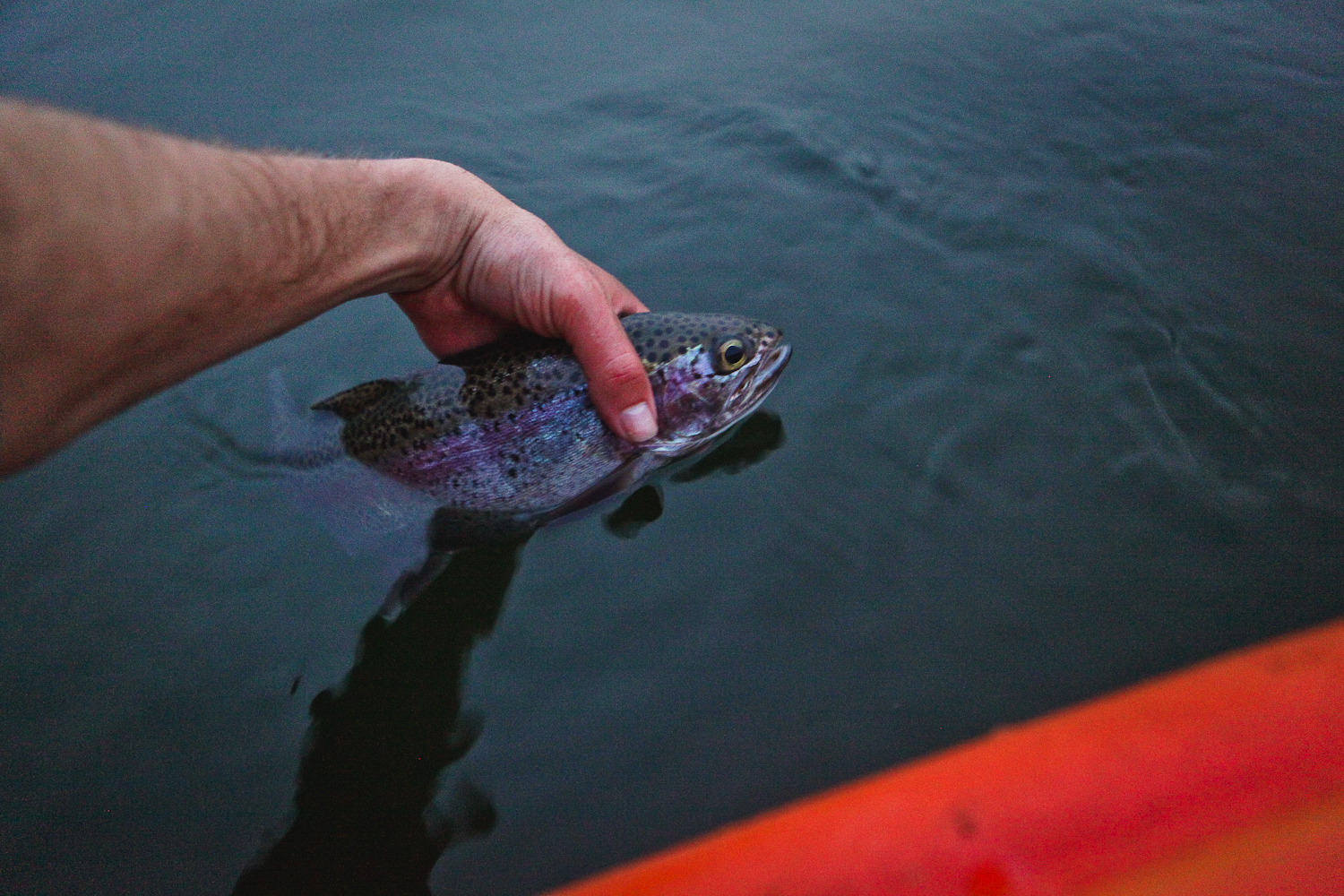 flyfishing-58.jpg