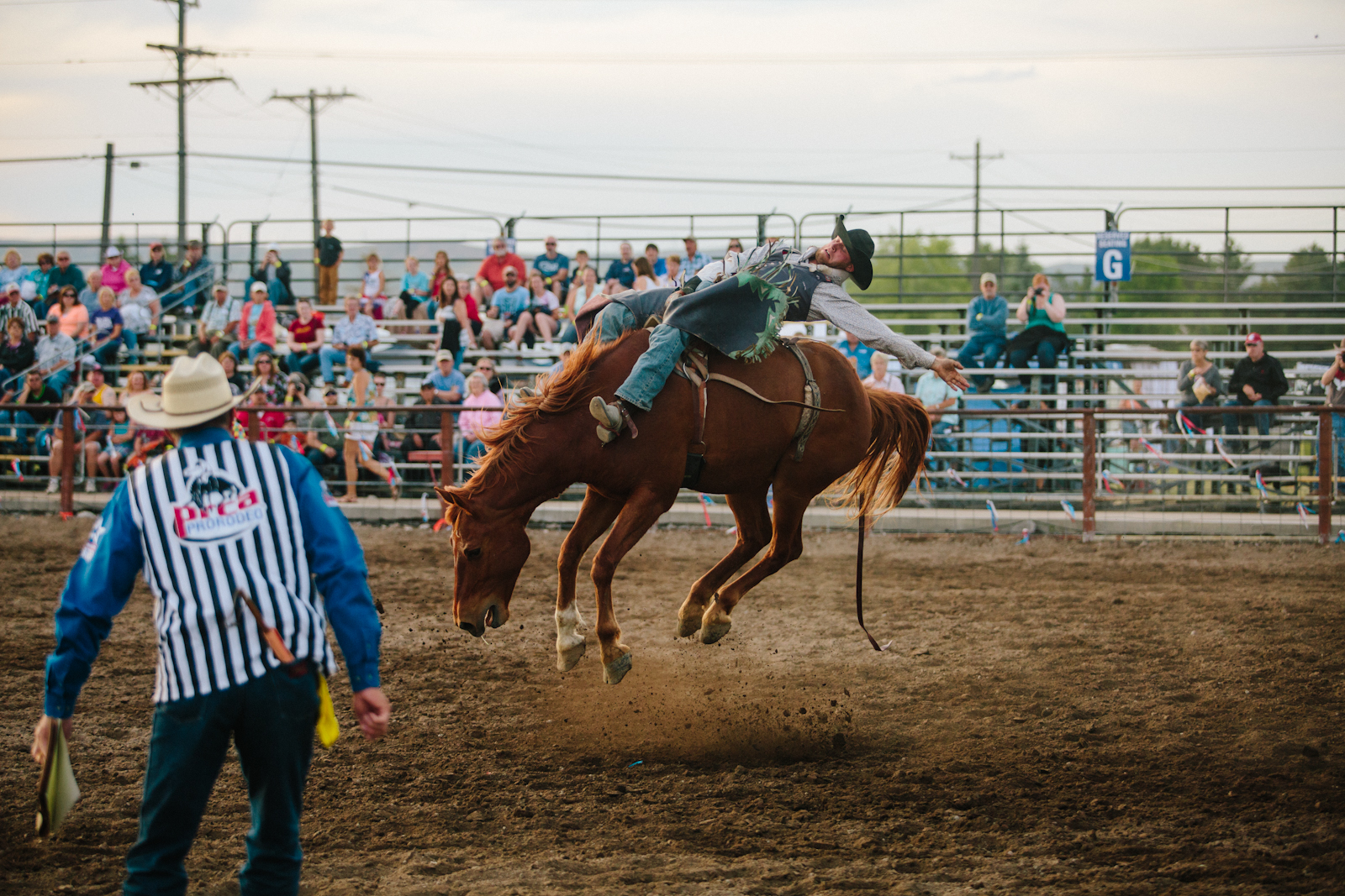 rodeo-16.jpg