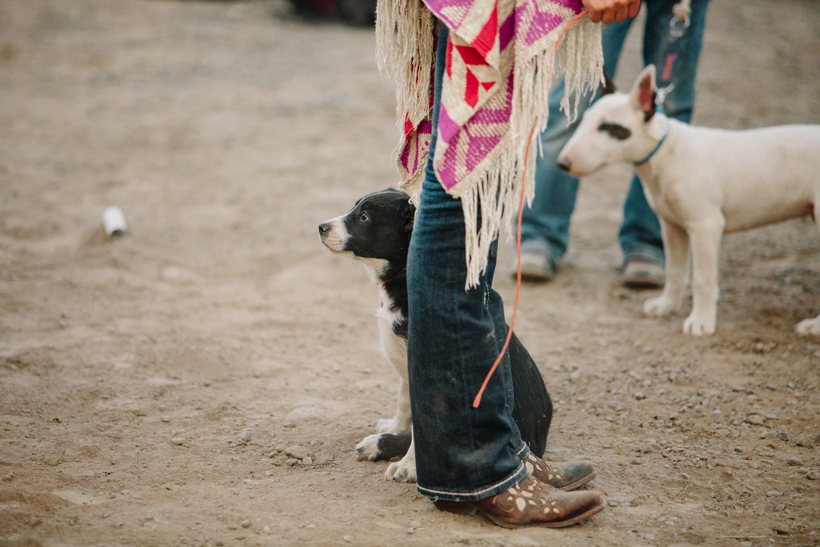 rodeo-34.jpg