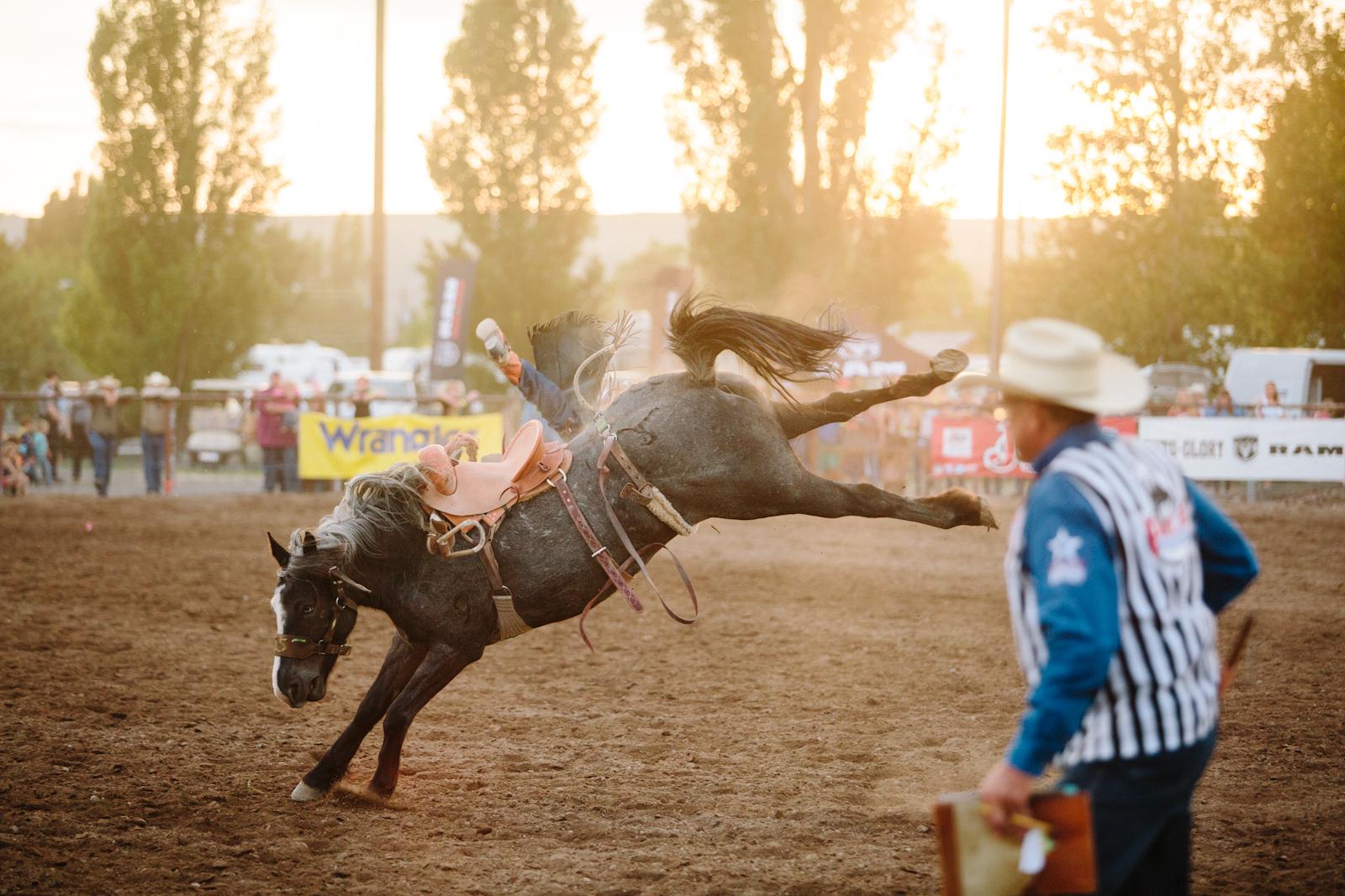 rodeo-35.jpg