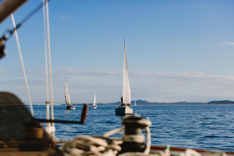 sailing race-24.jpg