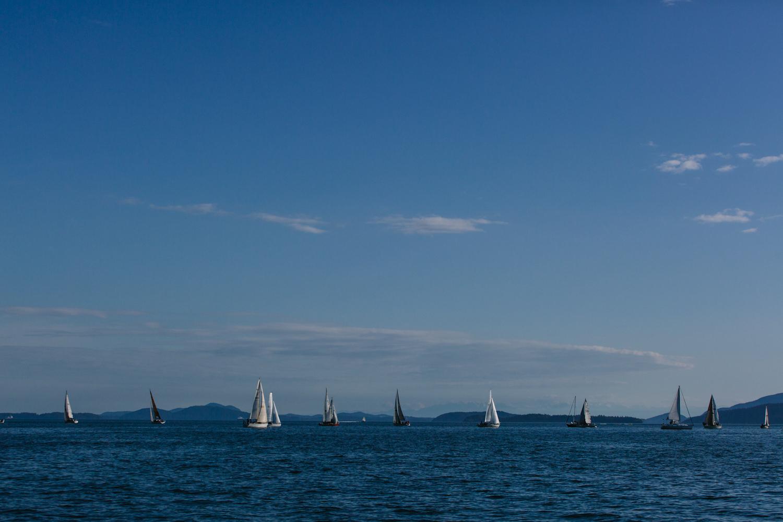 sailing race-15.jpg