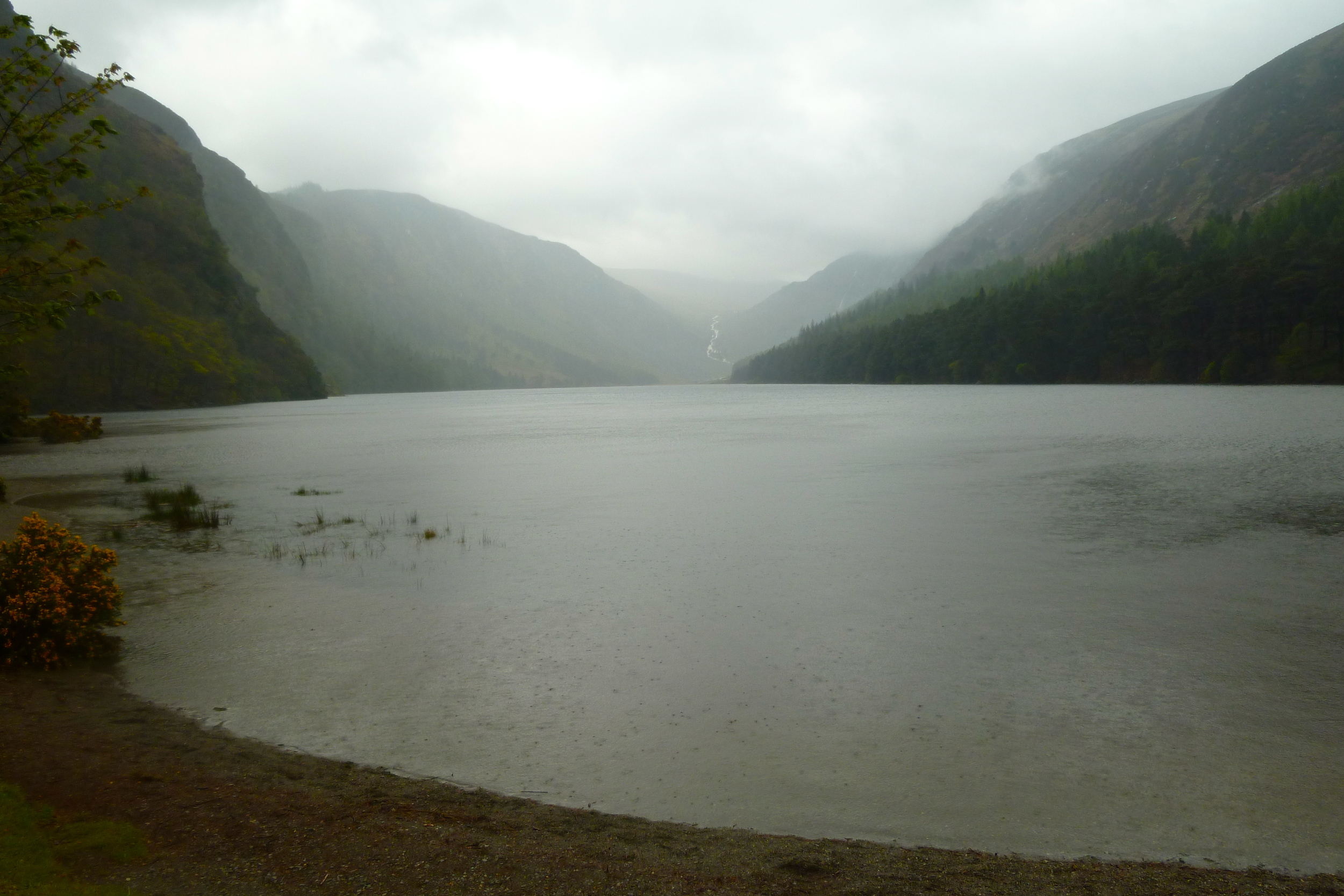 "I collected water from Glendalough (""glen of two lakes""), because St. Kevin lived and prayed there, and because it was so beautiful on a drizzly May morning."
