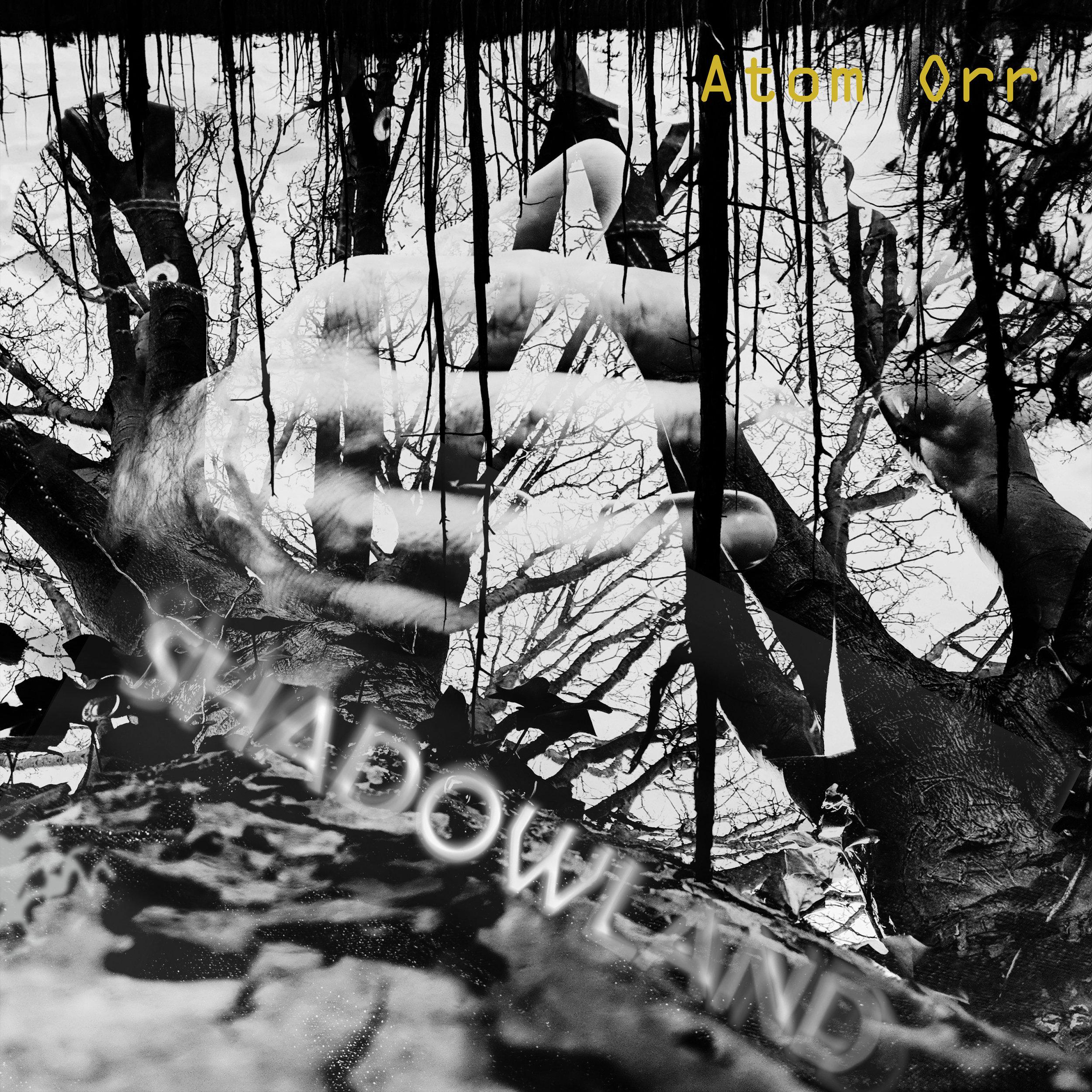 Shadowland-3000x3000-300ppi.jpg