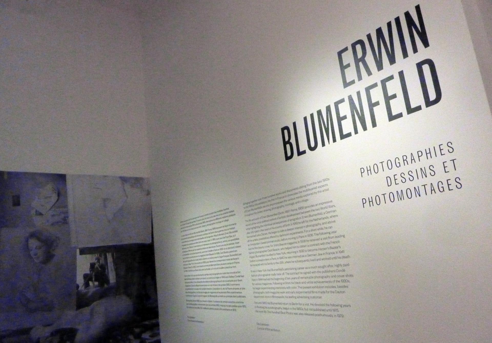 Blumenfeld_01.jpg
