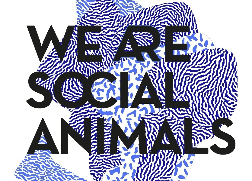 we are social animals - Design exhibitionMilano2016
