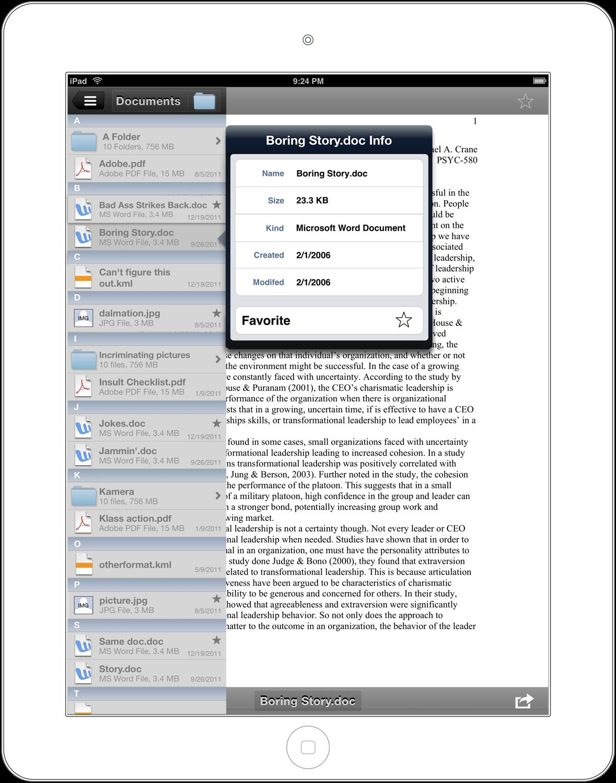 File Details - iPad