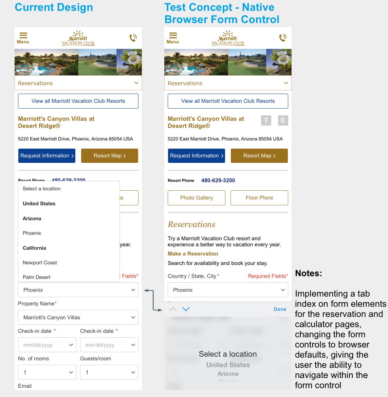 Native Browser Form Control Test