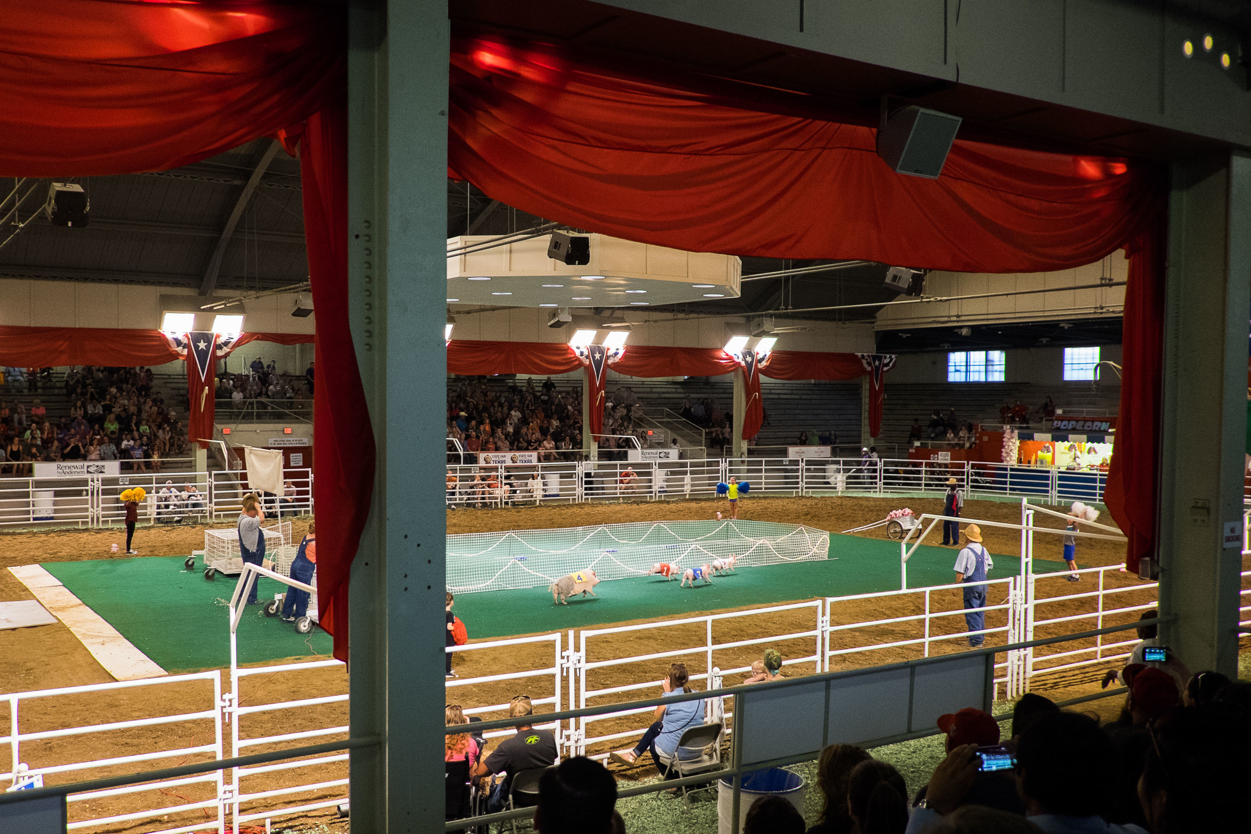 And in the South, you must have Pig Races. Ours won two of three races. We headed home on a high note!