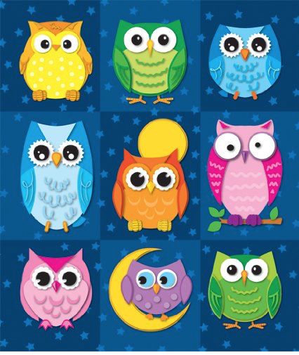 Owl Stickers appeal to all ages. This pack of 216 stickers is a great value.