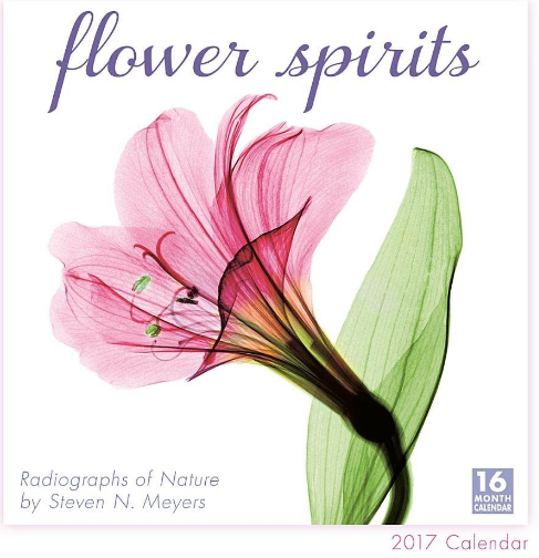 I love to decorate my studio with calendars and this is one I can't wait to have. I love flowers. The  Flower Spirits 2017 Calendar  uses x-ray photography to capture the texture and details of flowers in invisible light.
