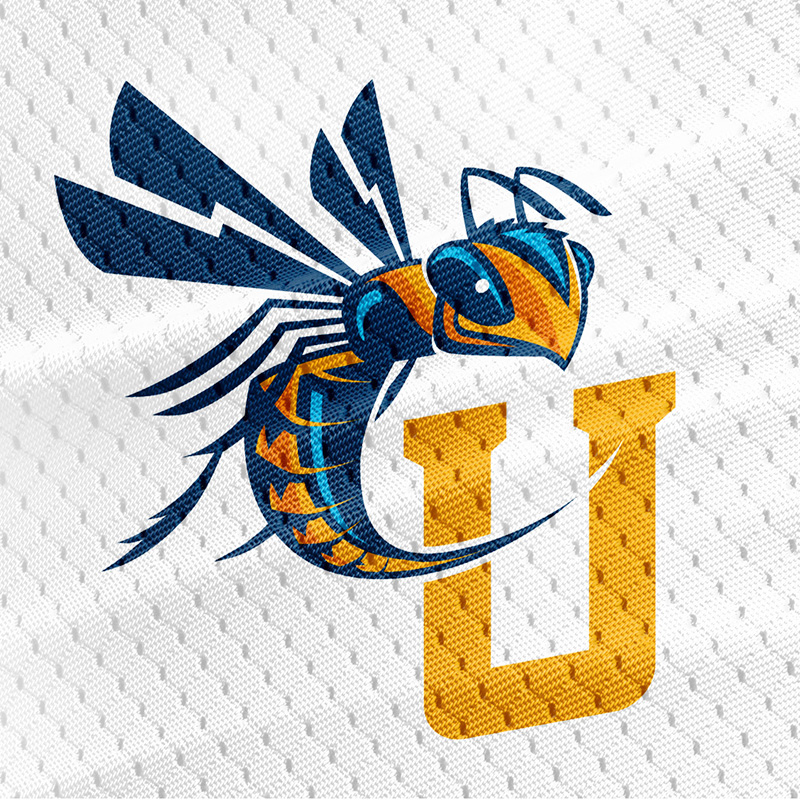 Cedarville_university_yellowjacket.jpg