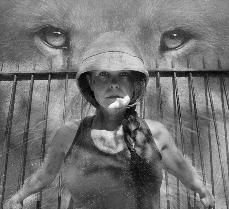 Trophy+Hunt+Lion+Eyes.jpg