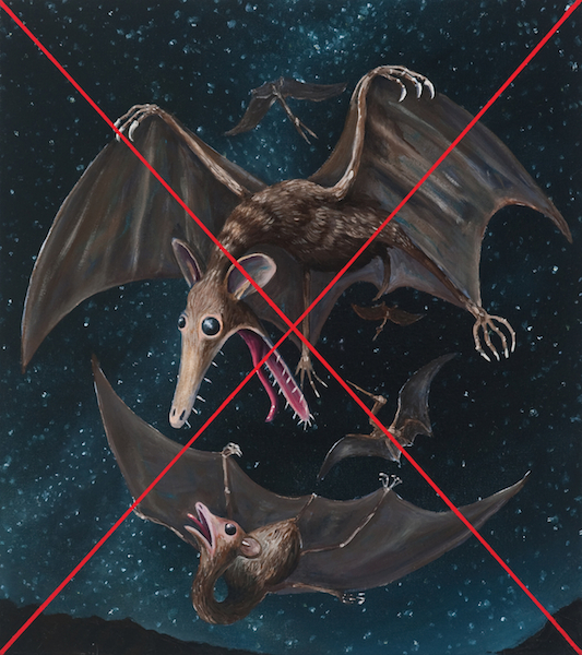 Note on the Pterodactyle Tribe considered as Marsupial Bats / Note: This Image is not a Factually Accurate Paleontological Restoration