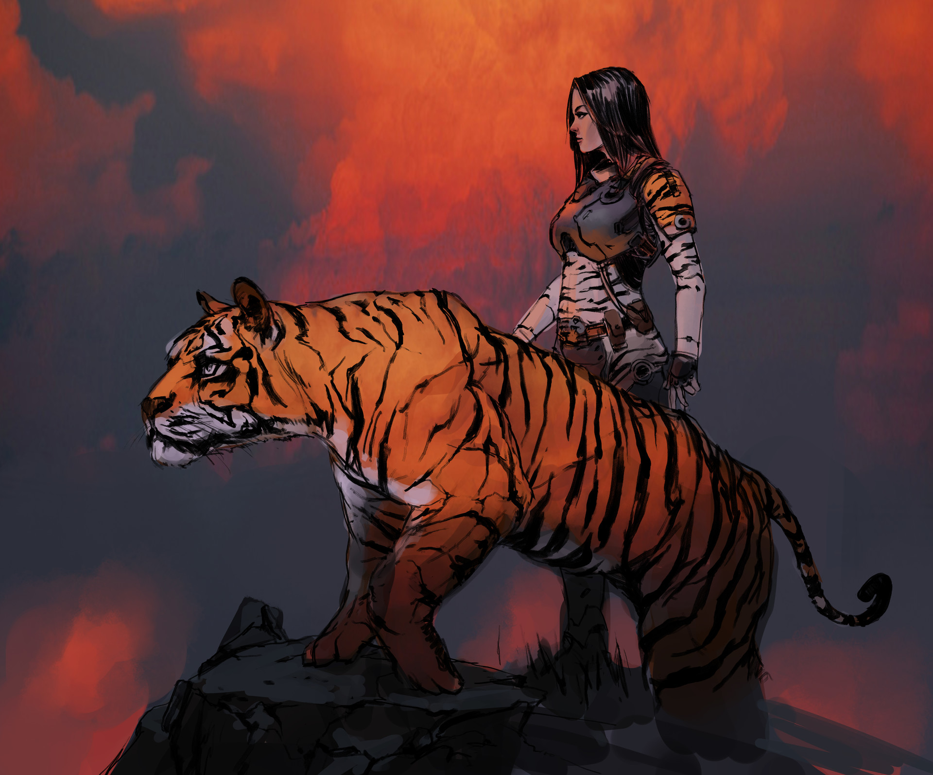 swang-tigersketch-color-01.jpg