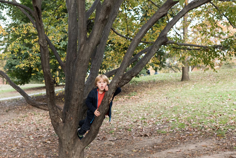 Brooklyn Family Photographer-11042017_96.jpg
