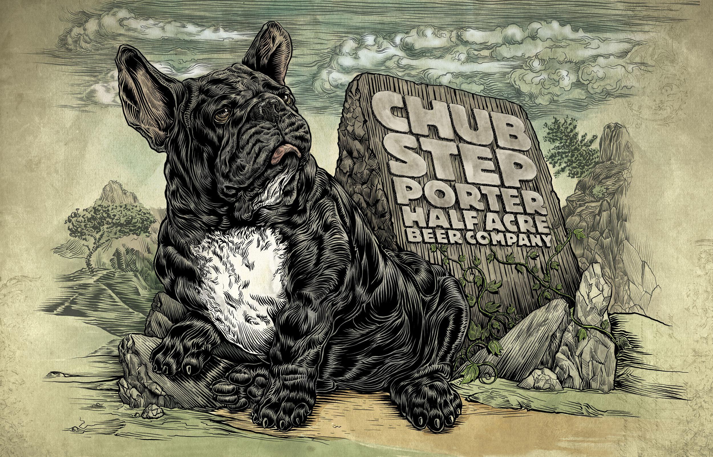 Chub Step 2018
