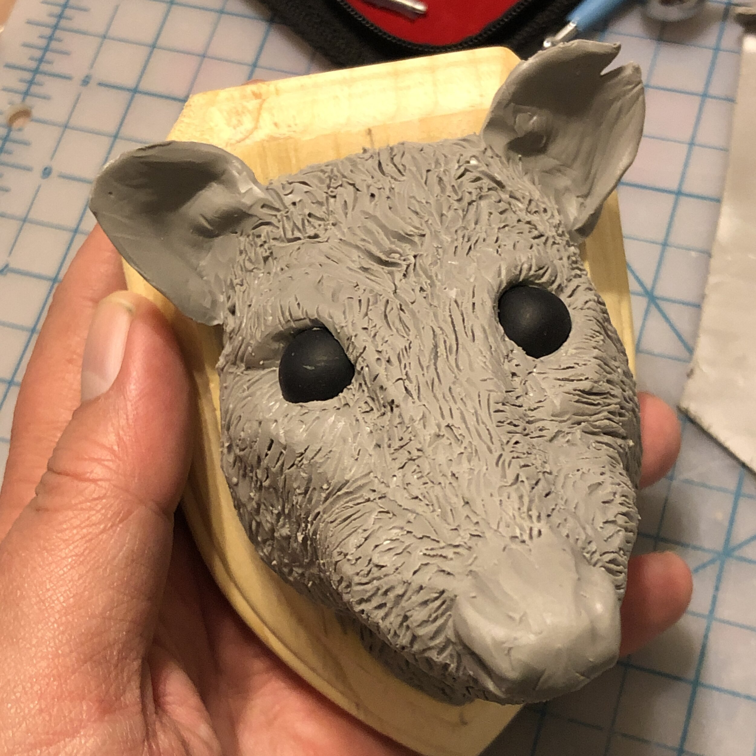 Possum in Process