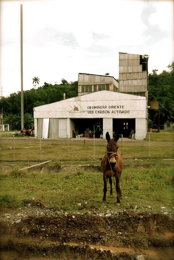 guanabo-cienfuego-baracoa-moa-cuba-alexander-pincus-00034.jpg