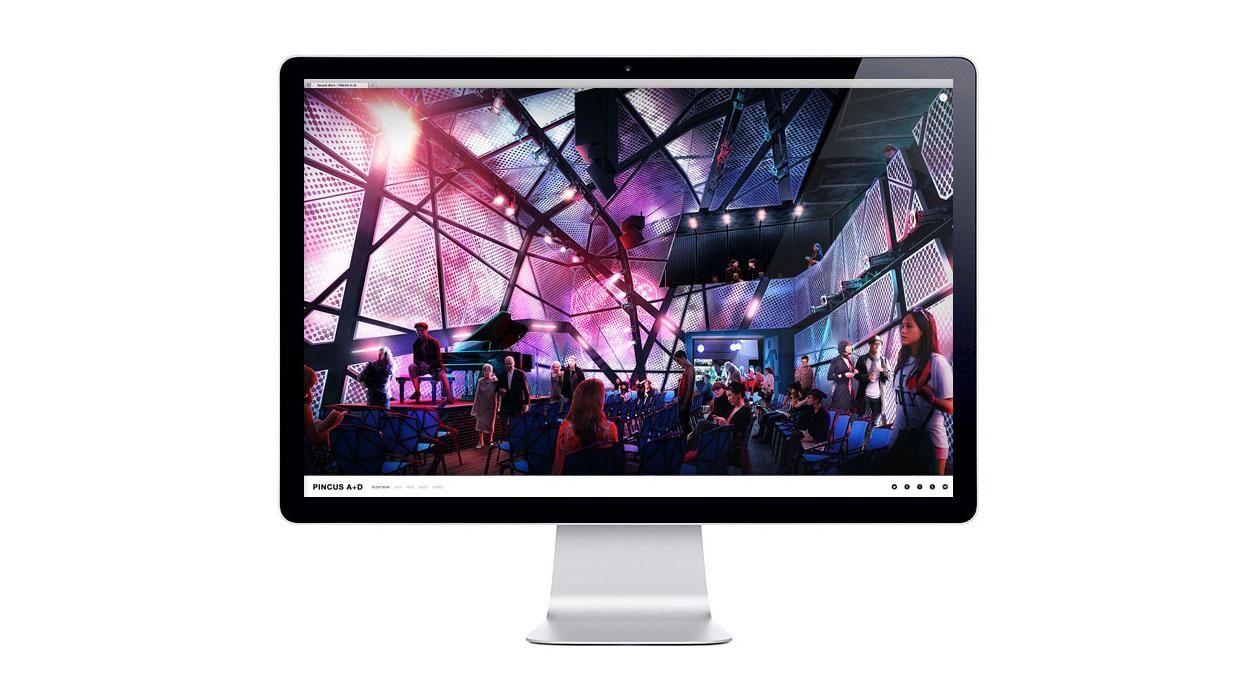 pincus-website-2013.jpg