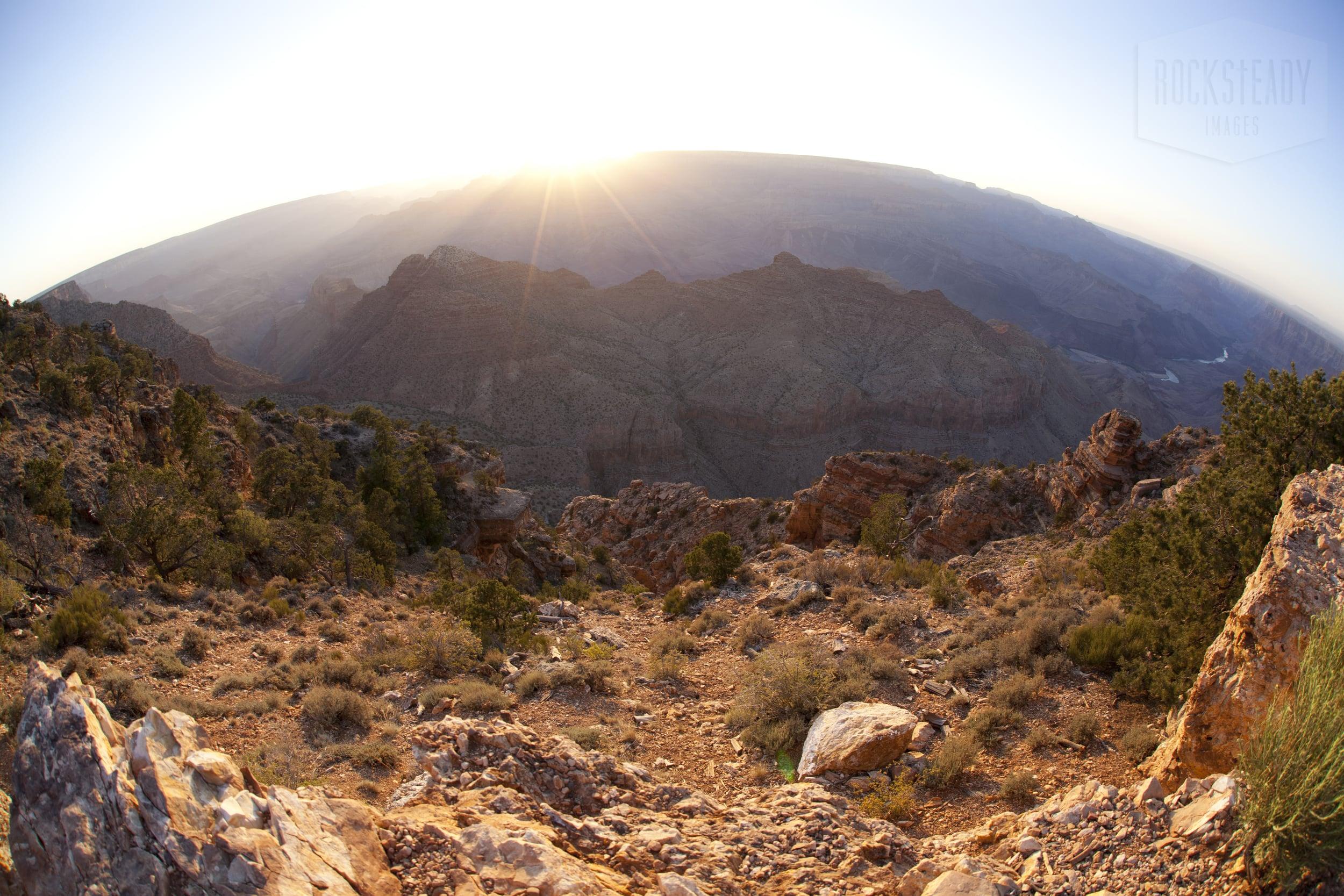 ROCKSTEADY IMAGES [Arizona] IMG_4602.jpg