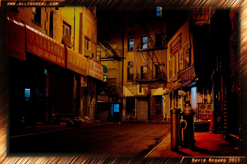 紐約的唐人街2013年 / Chinatown,New York 2013