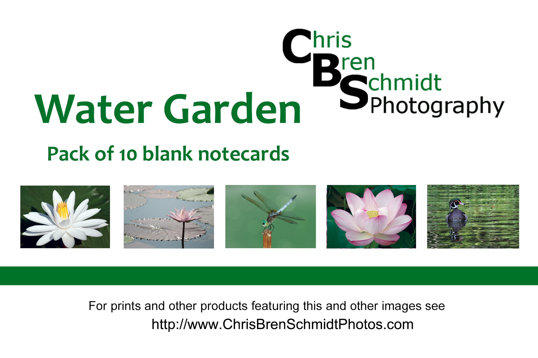 Water  Garden Notecards