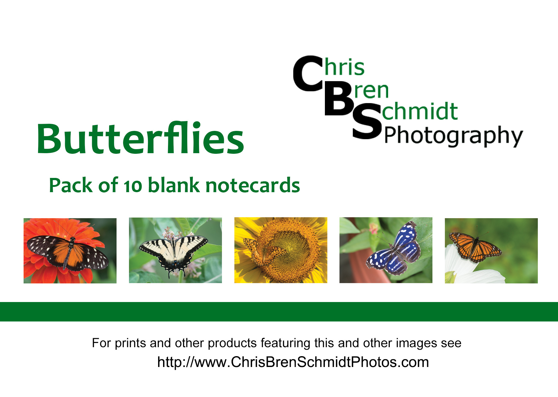 promo-Butterflies_notecards.jpg