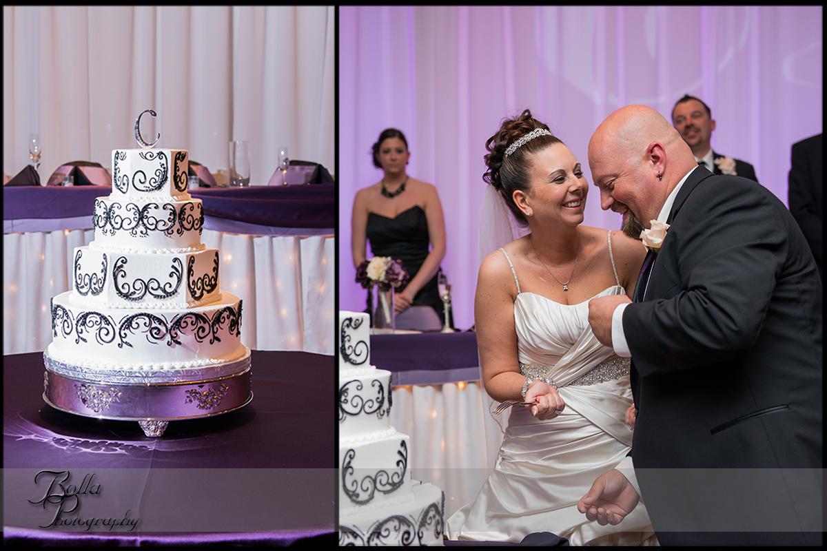 013_wedding_reception_columbia_il_falls_cake_bride_groom.jpg
