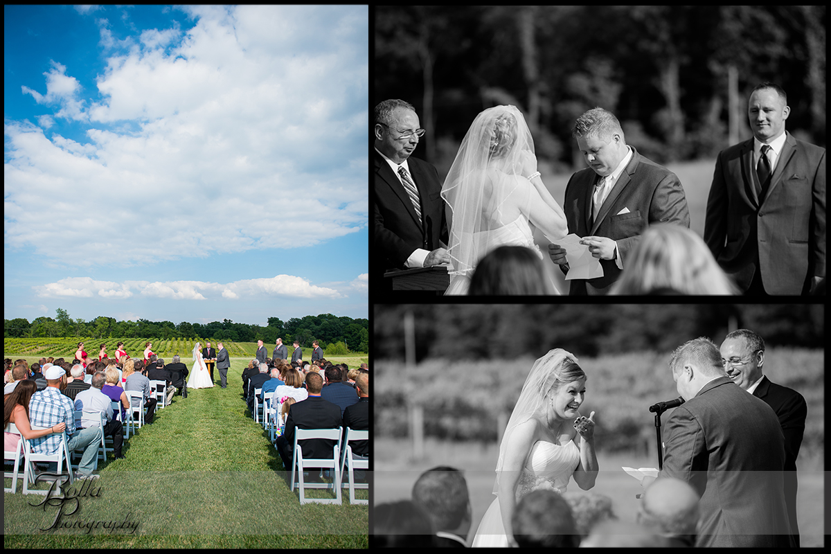 011-villa-marie-winery-maryville-il-wedding-groom-bride-outdoor-ceremony-clouds-vows-laughing-crying.jpg