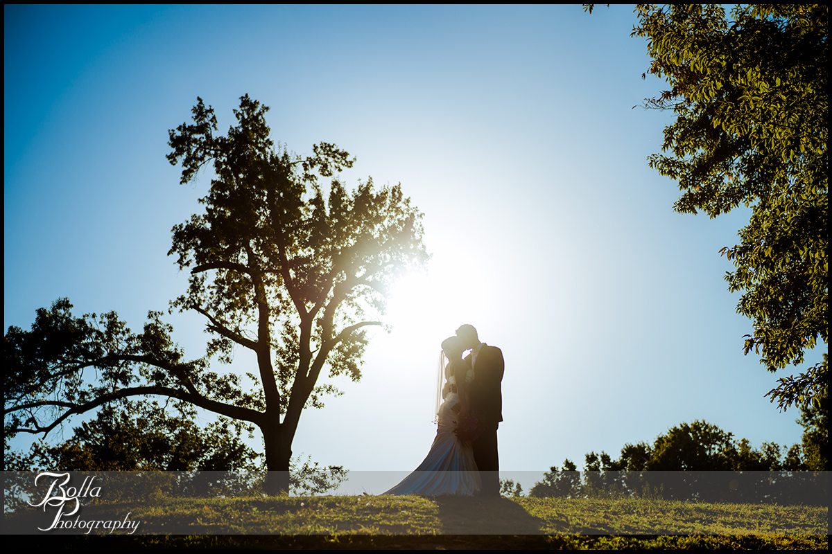 001-Bolla-Photography-wedding-Saint-Louis-MO-STL-bride-groom-portraits-park-silouhette-tree-Peters.jpg