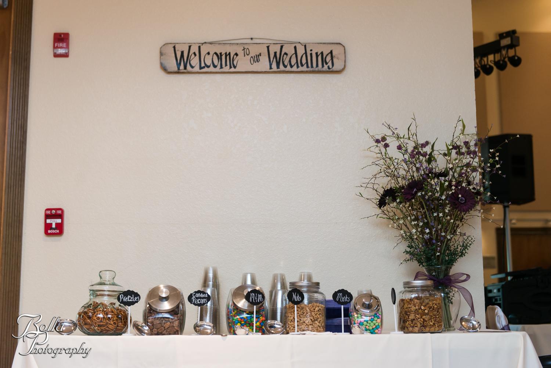 Bolla_Photography_St_Louis_wedding_photographer-0347.jpg