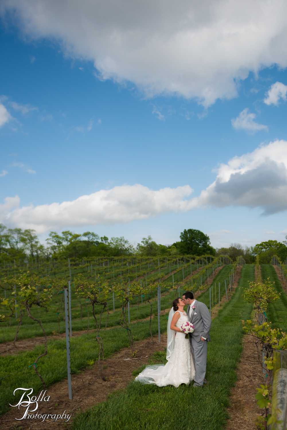 Bolla_Photography_St_Louis_wedding_photographer_Villa_Marie_Winery-0001.jpg