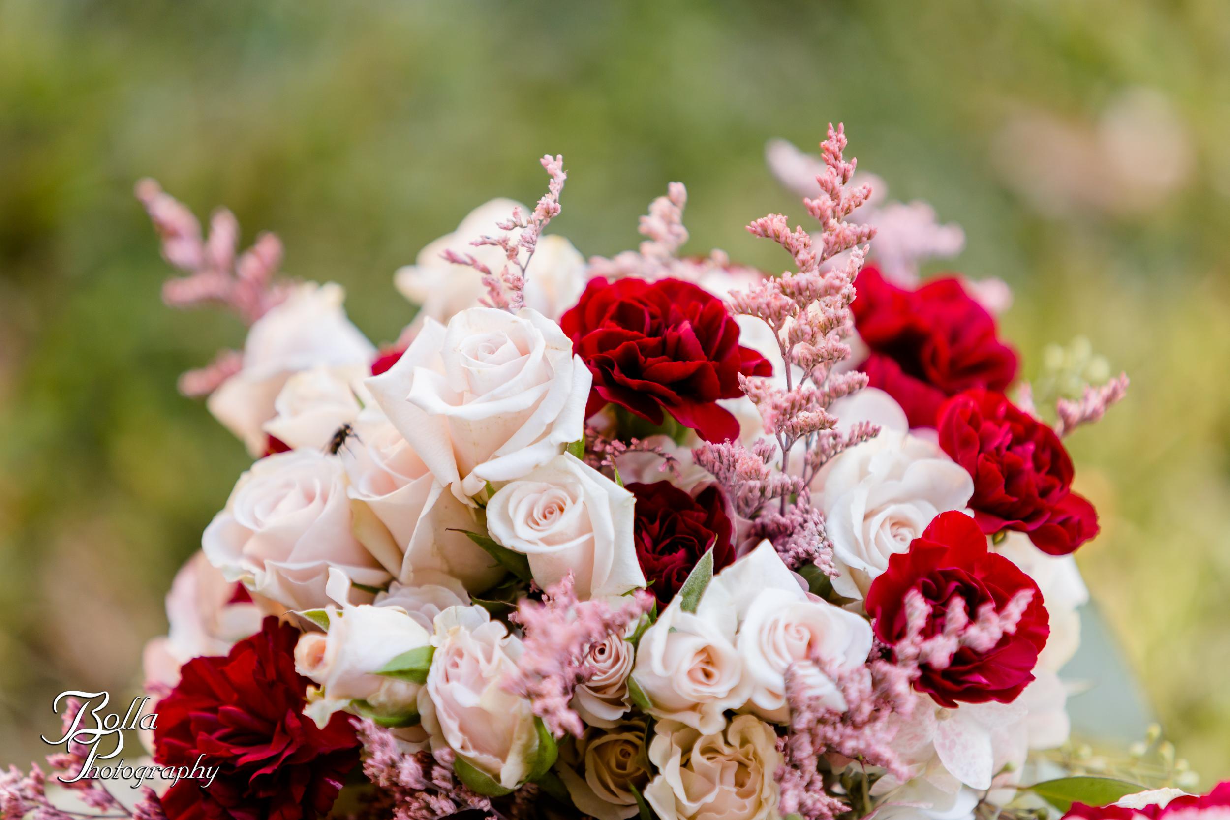 Bolla_photography_edwardsville_wedding_photographer_st_louis_weddings_Reilmann-0101.jpg