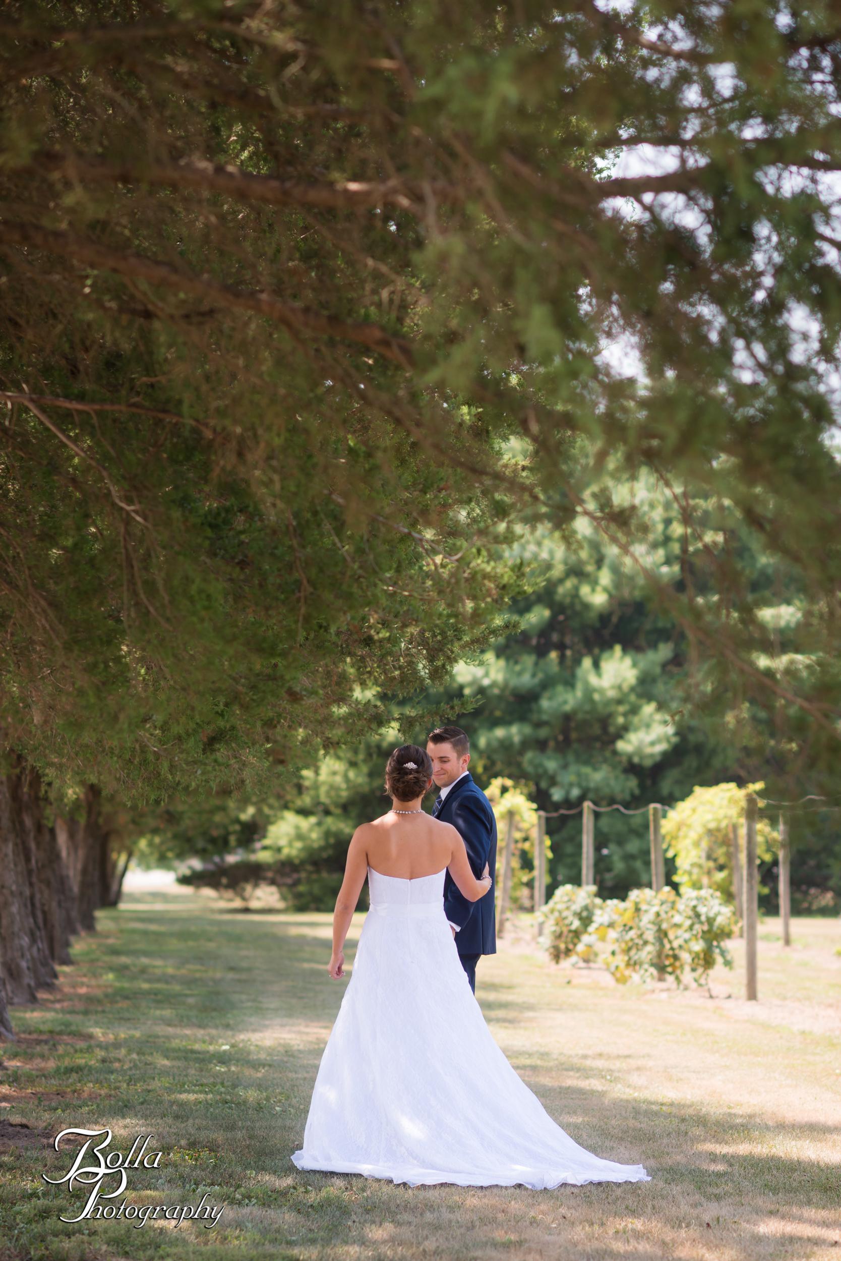 Bolla_photography_edwardsville_wedding_photographer_st_louis_weddings_Jessica_Barbachem_Dillon_Kaesberg_Waterloo_Red_Bud-0084.jpg