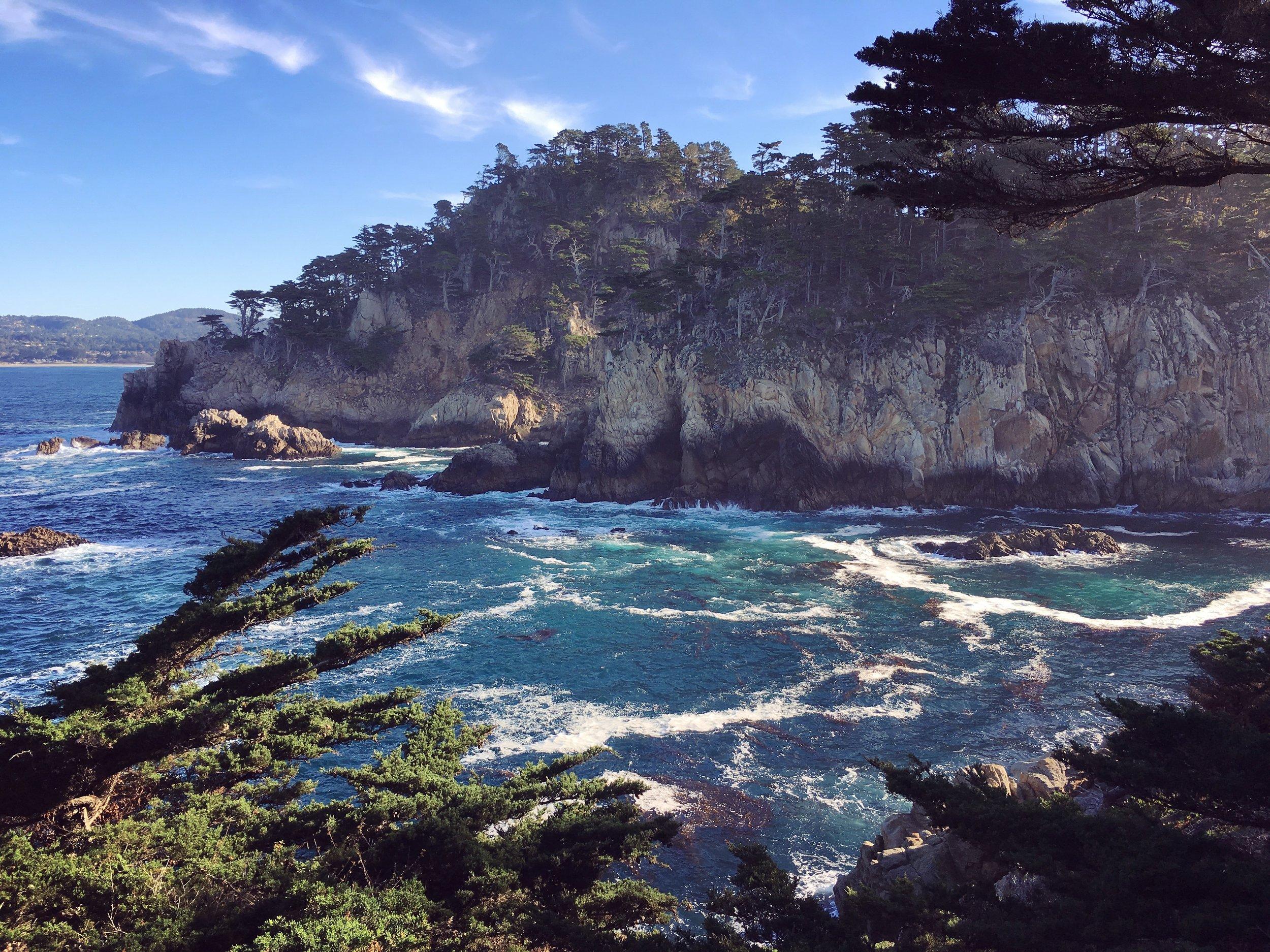 Crédit photo : Jaime Damak Point Lobos