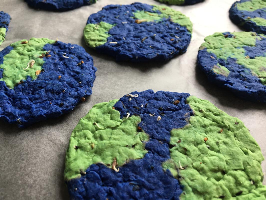 Des fleurs pour la Terre-Jour de la Terre-Bricolage-MamanBricole-Fleurs-à planter-utile-#MamanBricole-création-pâte de papier-bleu et vert-Je suis une maman