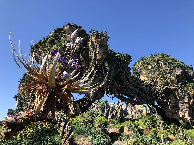 Pandora-Fligth of passage-Manège-Walt Disney World-Disney-Voyage en famille-Voyage à Disney-enfants-maman-Je suis une maman