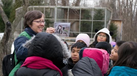 Camp d'été-camp écomuséum-zoo-jeunes-enfants-été-suggestions-je suis une maman