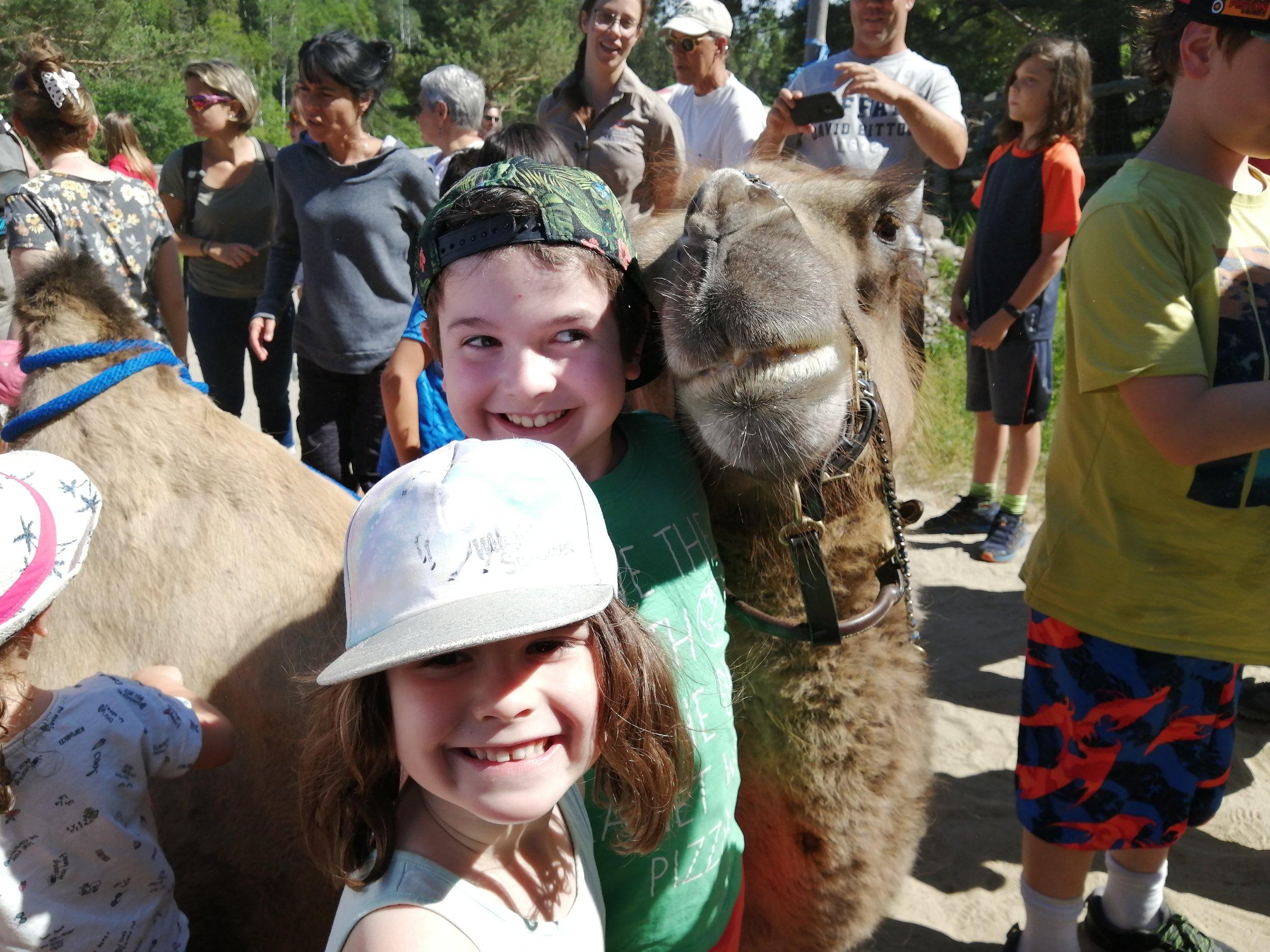 voyage-famille-lac-saint-jean-chameau-gobi-zoo-sauvage-must-activité