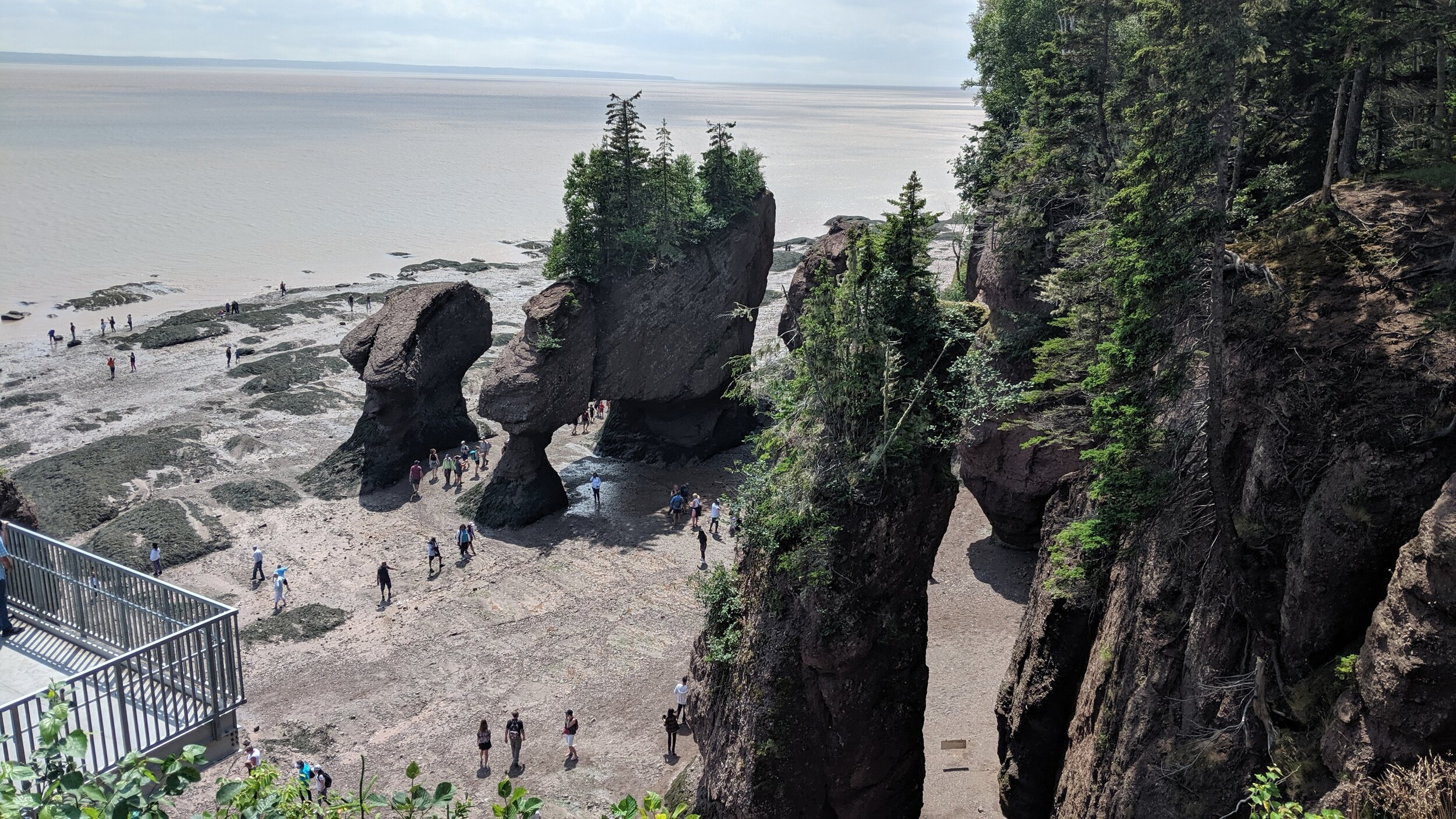 hopewell-rocks-attraction-nouveau-brunswick-roches-modelées