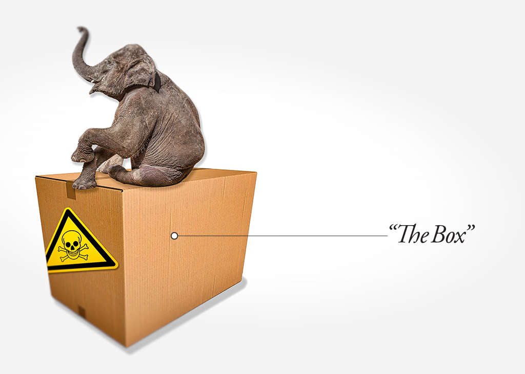 Elephant_Box_1024_052918.jpg